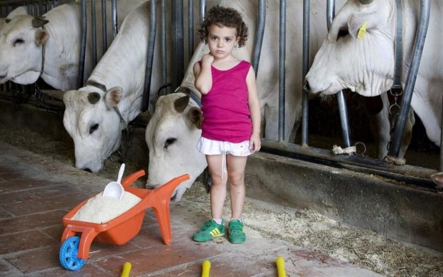 Cum arată jucăriile copiilor bogați și săraci din diferite țări. Un proiect foto inedit!