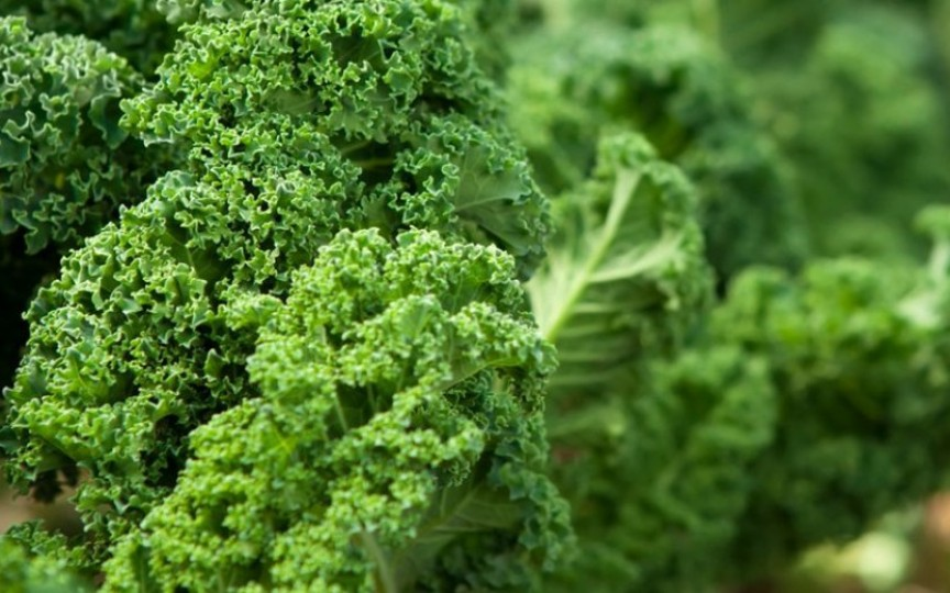Top 10 motive să consumi cât mai des varza kale