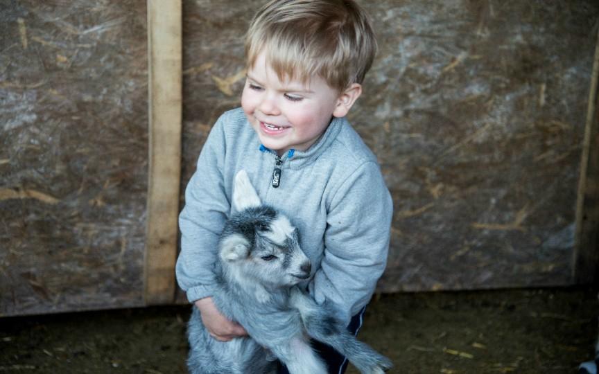Animalele fac copiii mai puţin predispuşi la alergii