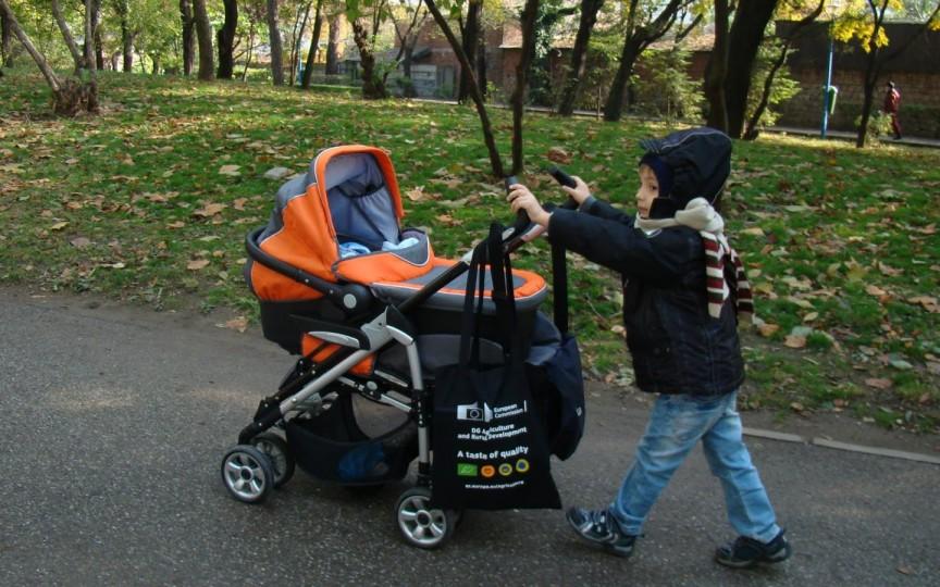 Sfaturi utile privind alegerea căruciorului pentru copil