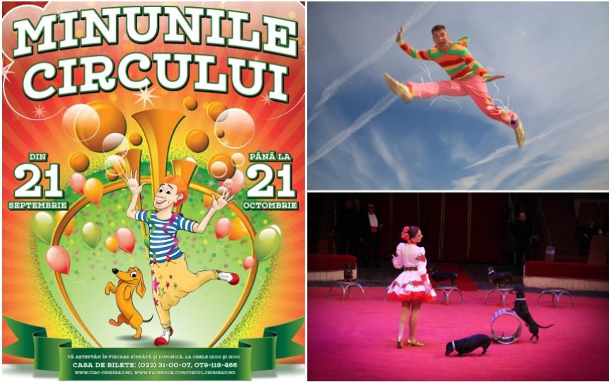 Descoperă minunile circului la Chișinău!
