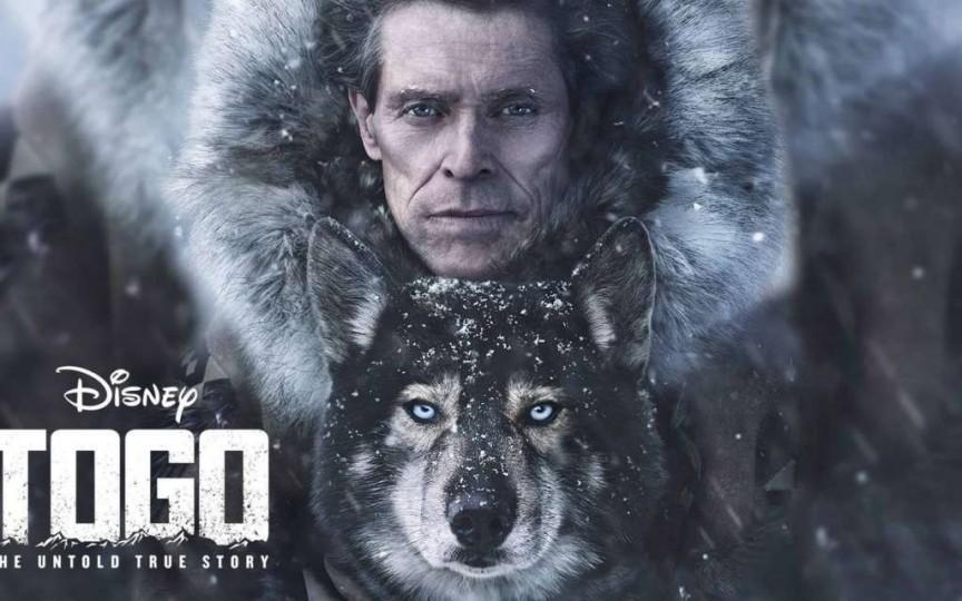 Un film despre cel mai eroic animal al tuturor timpurilor - Togo