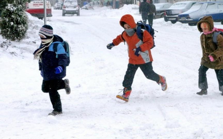 Câte zile vor sta elevii în vacanța de iarnă