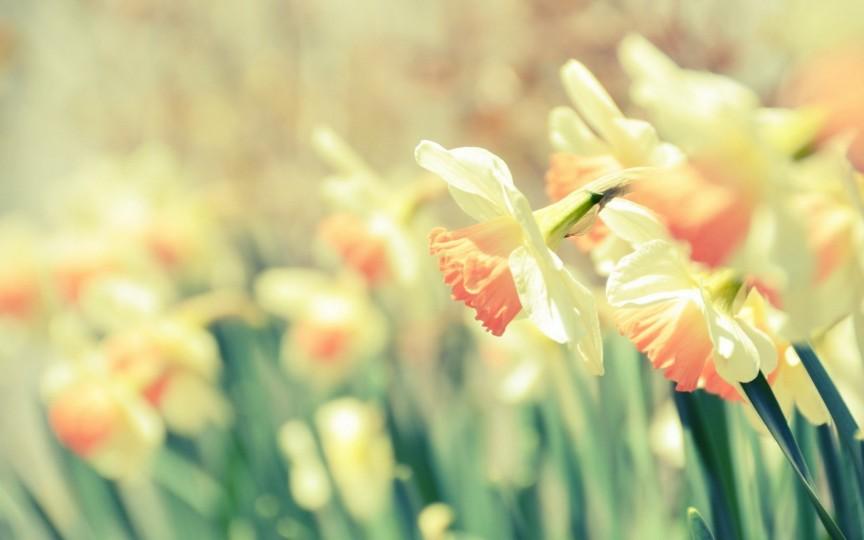 Calendar onomastic pentru 9 martie. Iată ce sărbători sunt astăzi