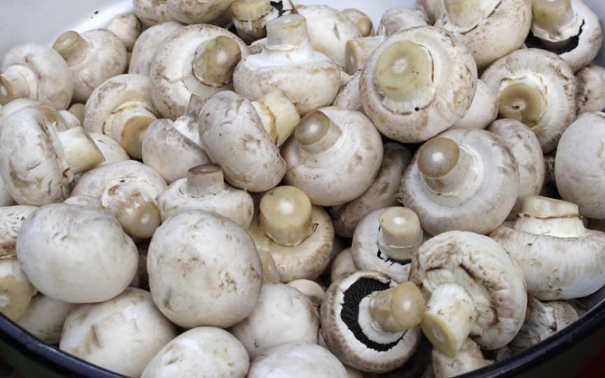 În capitală au fost înregistrate 7 cazuri de intoxicații cu ciuperci