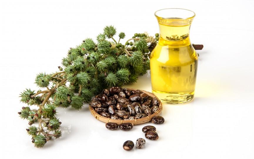 Uleiul de ricin - ingredientul care regenerează părul, genele și sprâncenele