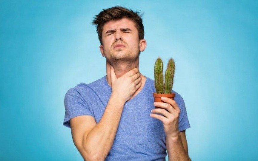 Câteva remedii simple și naturale împotriva durerilor de gât