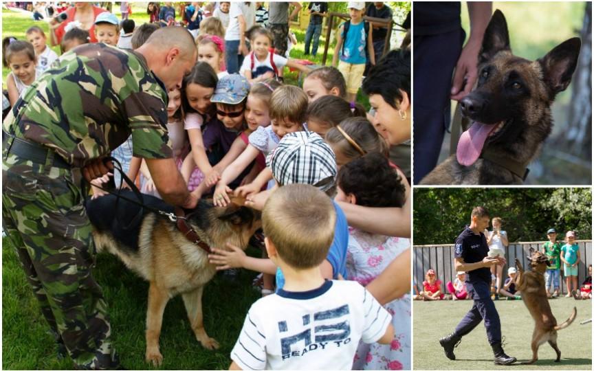 Câinii antrenați ai Poliției de Frontieră într-un show spectaculos! Află unde și când va avea loc