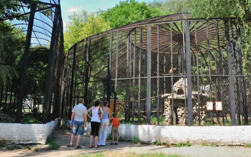 Grădina zoologică se deschide astăzi, iar copiii intră gratuit
