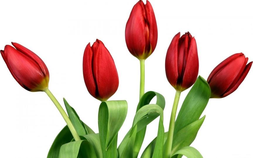 Calendar onomastic pentru 10 martie. Vezi ce sărbători sunt în această zi!
