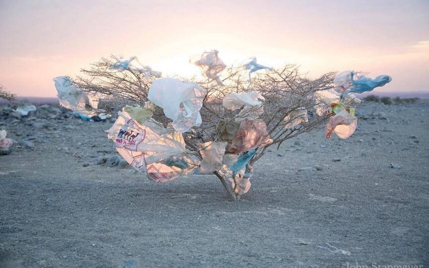 Fotografia zilei: Îngropați în plastic