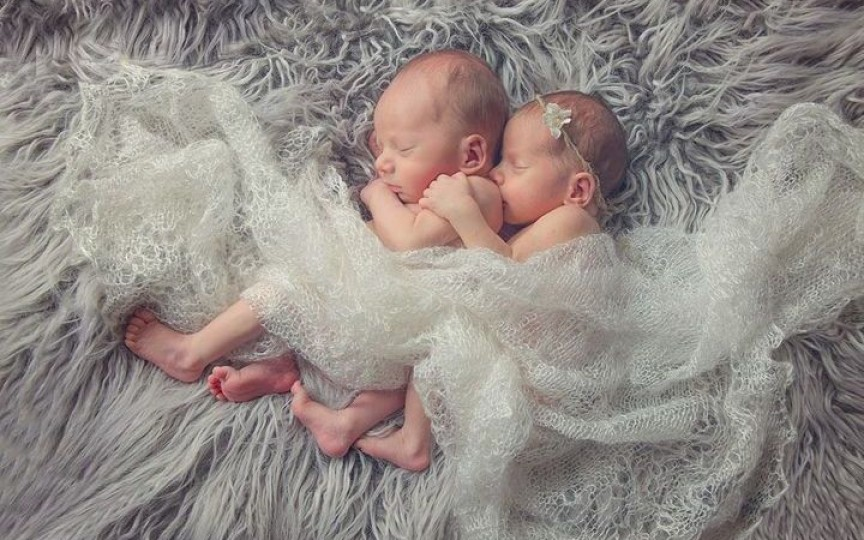 Horoscop chinezesc: cum va fi personalitatea copilului care se va naște în 2019 – anul porcului