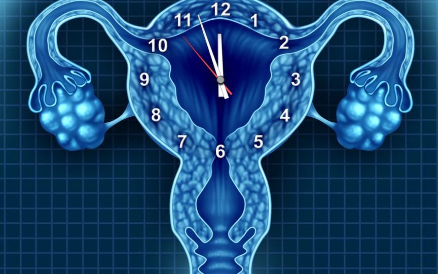 """Medic obstetrician-ginecolog despre """"ceasul biologic"""": O femeie mai are doar 12% din rezerva ovariană la 30 de ani și doar 3% la 40 de ani"""