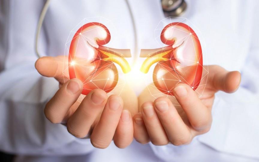 Iată ce trebuie să consumi ca să ai rinichii sănătoși!