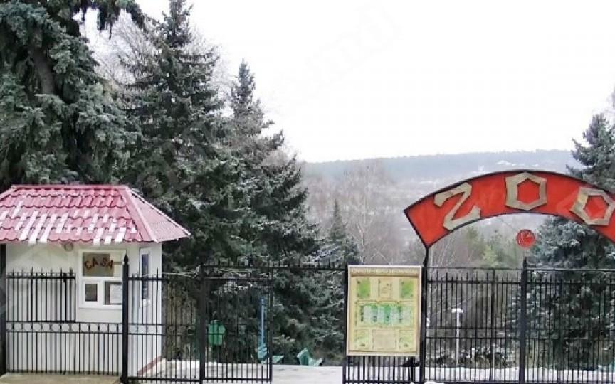 Acces gratuit la Grădina Zoologică pentru copii de 1 iunie
