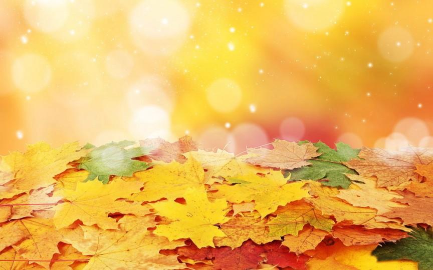 Poveste: Aventura unei frunze de toamnă