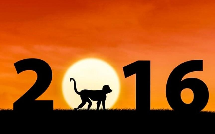 Ce spune anul Maimuței despre copiii născuți în 2016
