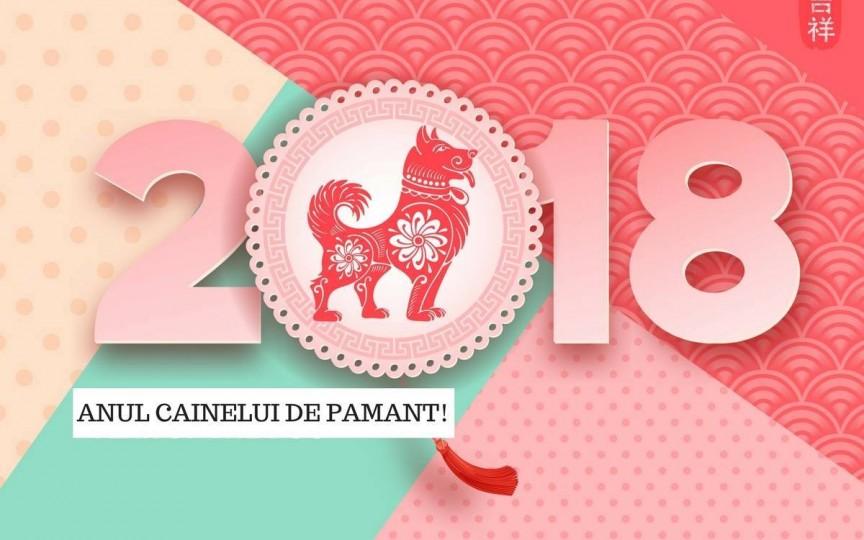 Anul Câinelui de Pământ aduce mari schimbări în 2018