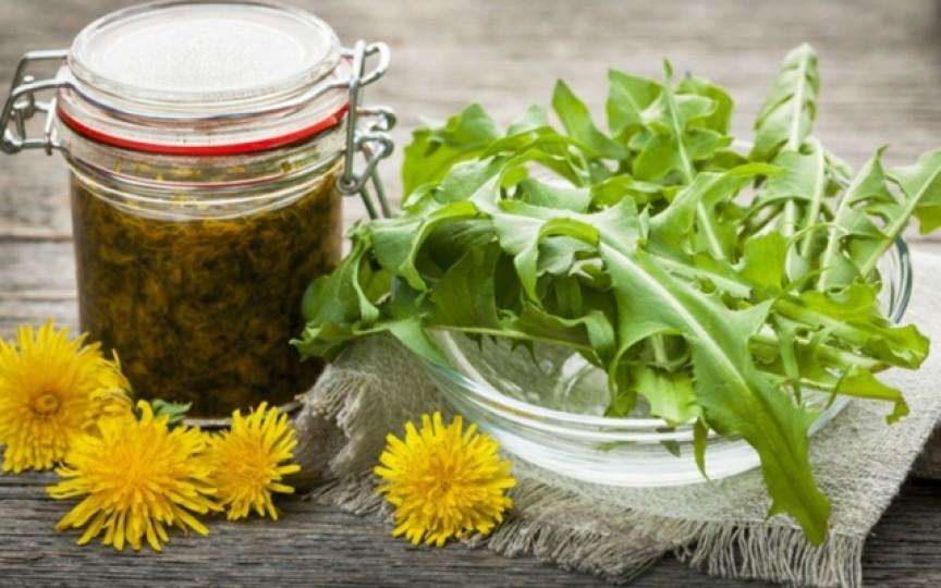 Cum putem folosi păpădia în bucătărie – 10 utilizări nebănuite