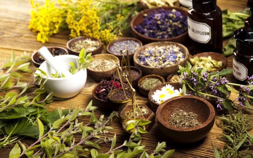 Top 5 plante care te ajută să scapi de dureri