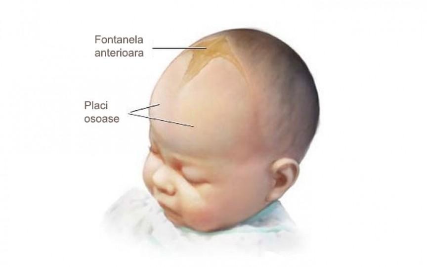 Fontanela bebelușului: Tipurile acesteia, când se închide și ce anomalii poate avea